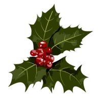 Christmas Holly by Roscofox