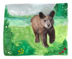 Bear by Paintwick