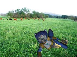 Krystal Laying In The Grass by xXTREMEXx