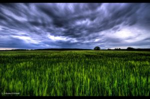 Storm's coming Wallpaper by JoInnovate