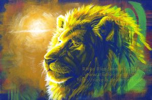 For Dolo the Lion by rieke-b