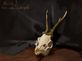 skull DS sketch by EthicallyChallenged