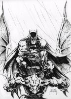 Batman on Gargoyle con sketch by JMan-3H