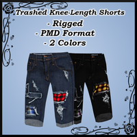 Trashed Knee-Length Shorts DOWNLOAD by Reseliee