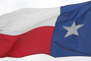 Texas Flag by Dyslexic-Ferret