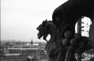 Gargoyles of Notre Dame by nathan8