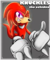 ::KNUCKLES:: by shimmyshammy