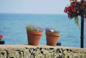 Wall side pots by bananarama96
