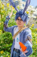 ROTG: It's the Carrot or the Boomerang by iRaikiri