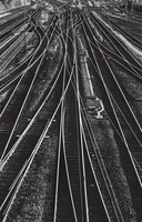 Lines by BennyBrand