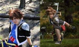 Sora Wig Comparison by Kytelian