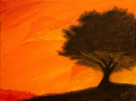 Orange Tree by SamKent