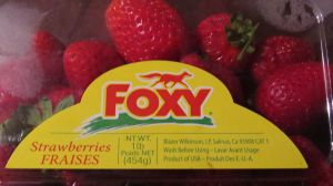 Foxy Did You Make A Strawberry Company? by boeingboeing2