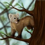 CE, Coba the Pine Marten by RicoShae