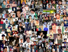 Louis Tomlinson Collage by iluvlouis