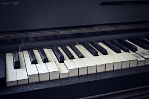 play it again by MariaBPhotos