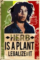 Herb is a plant. by Ocelotek