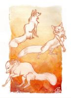 Foxes_Wendling's style study by Spighy