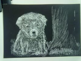 Very First Scratch Board art by PaoloNormalState