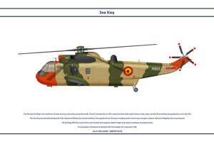 Sea King Belgium 1 by WS-Clave