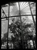Batignolles - Greenhouse by clairwitch