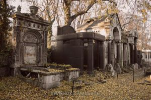 Old Jewish Cemetery V. by rembo78