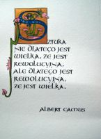 Albert Camus on art by MagdalenaWolff