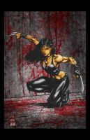 X23 by Jake-Townsend