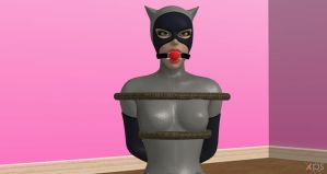 Catwoman Ball gagged (Arkham City) by Algoid