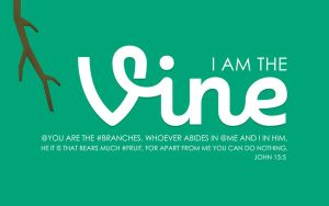 John 15:5 Wallpaper by Xiphos71