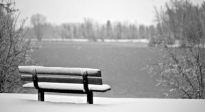 University pond bench by Shano11