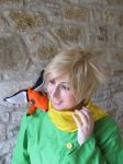 The Little Prince / Le Petite Prince by Nekucosplay
