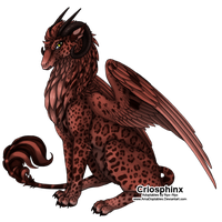 Cao: Kherjee by AmaDoptables