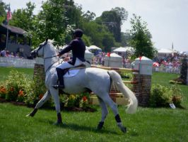 Upperville Horse show 1 by Apollos-Foxhunt