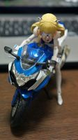 ALTLENE with GSX-R1000 - 1 by panda180