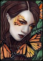 ACEO - Monarch by ElvenstarArt