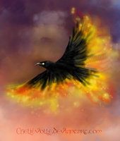 The Fire Crow by Faejala