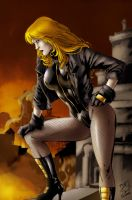 Black Canary by Seabra