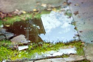 A Puddle's Secret III by LashelleValentine