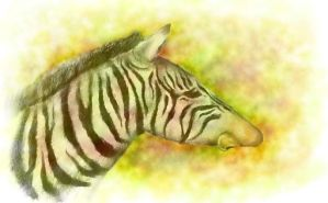 Zebra-nose by Industrial-Squirrel