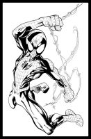 Mark Bagley ultspidey51 inked by Kriss777