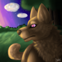 Realistic Wolf by UnchartedUnknownStar