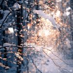 Golden snow by WouterPera