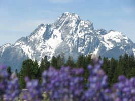 Grand Tetons by Misted-Dream