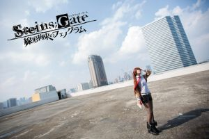 Steins Gate by Acyz