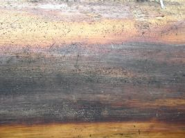 Texture - Wood 23 by SanStock