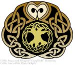 Celtic barn owl by illahie