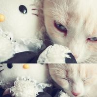 Dreams about Hello Kitty by BluebellDawn