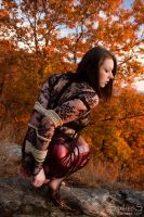 Color of Fall by BlackRoomPhoto