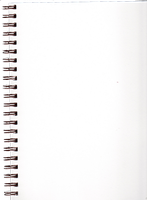 Pre-Cut Blank Spiral Notebook Page by Bnspyrd